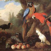 Bogdani Jacob Landscape With Birds And Fruit