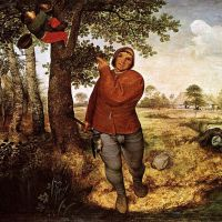 Bruegel The Peasant And The Nest Robber