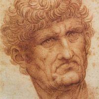 Da Vinci Head Of A Man