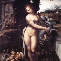 Da Vinci Leda 1508-15
