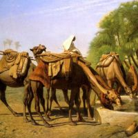 Gerome Camels At The Fountain