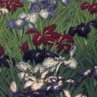 Hasui Kawase Iris - Ayame - 1929