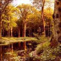 Monsted A Forest Stream