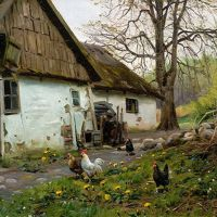 Monsted Bromolle Farm With Chickens