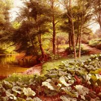 Monsted The Path On The Rivers Edge