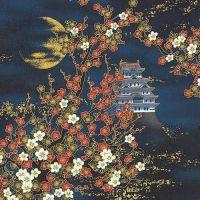Nobu Fujiyama Lair Of The Dragon - Moon Serenade