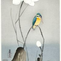 Ohara Koson Kingfisher With Lotus Flower