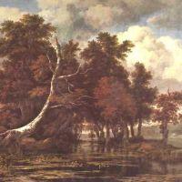 Ruisdael Le Marecage Pres D Un Bois