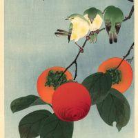 Soseki Komon Song Birds On Persimmon Bough