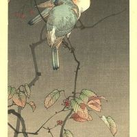 Watanabe Shotei Blue Birds At Night