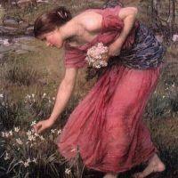 Waterhouse Narcissus
